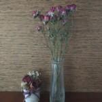 dryflower0002