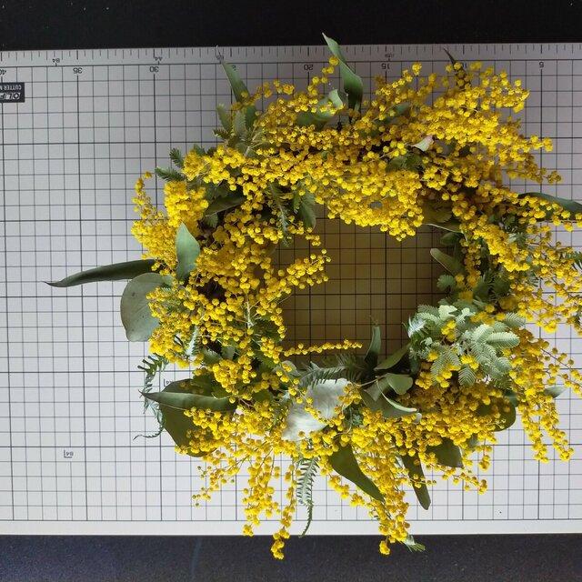 dryflower0005